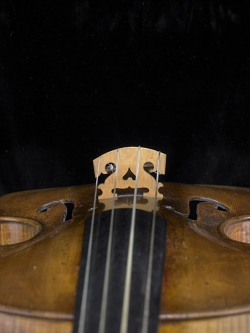 Bridge<br /> detail of violin from the shop of Amati
